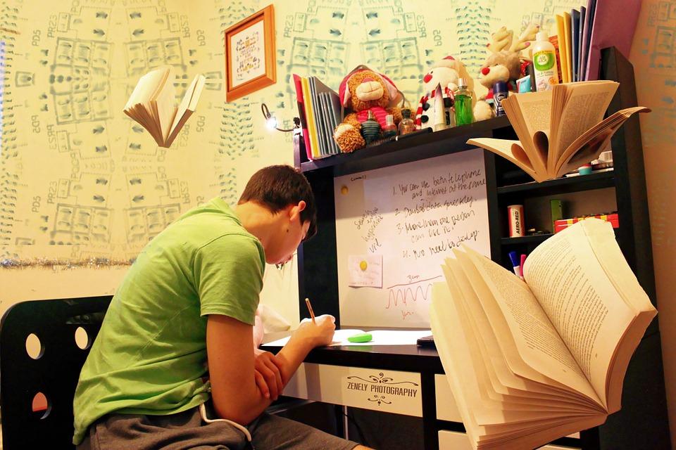 persuasive essay writing service